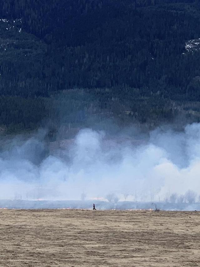 Grass fire breaks out at 12 Mile south of Revelstoke